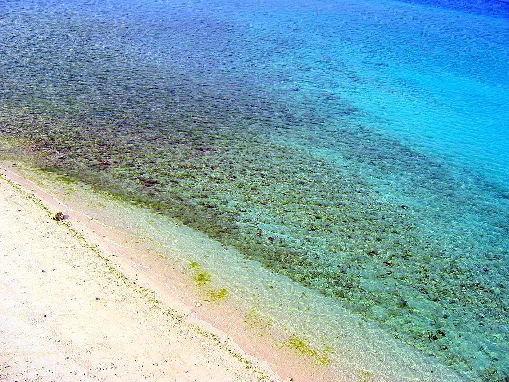 息を呑む透明度のアンチ浜