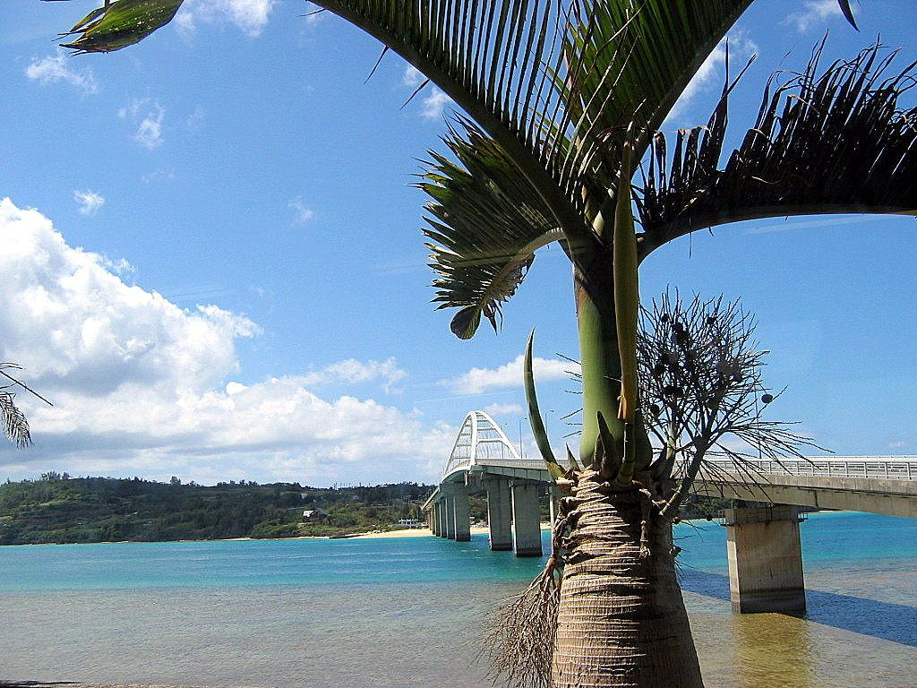瀬底島へ架かる橋「瀬底大橋」