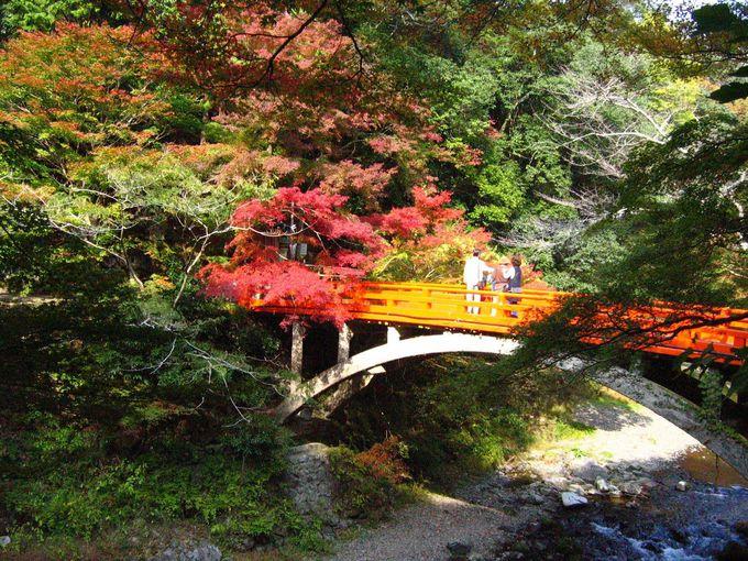 紅葉名所、京の奥座敷を訪ねて。
