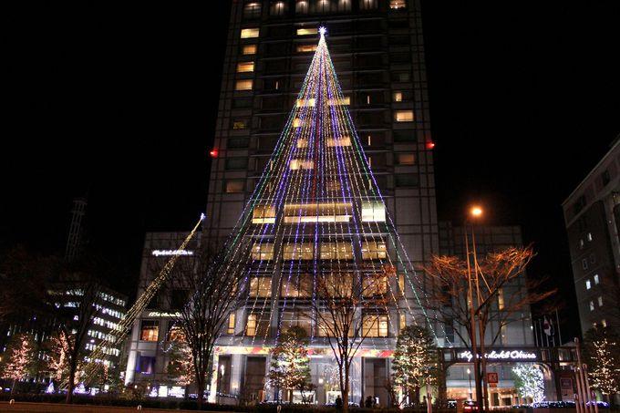 ホテル部門代表「京都ホテルオークラ・創業125周年クリスマスイルミネーション」
