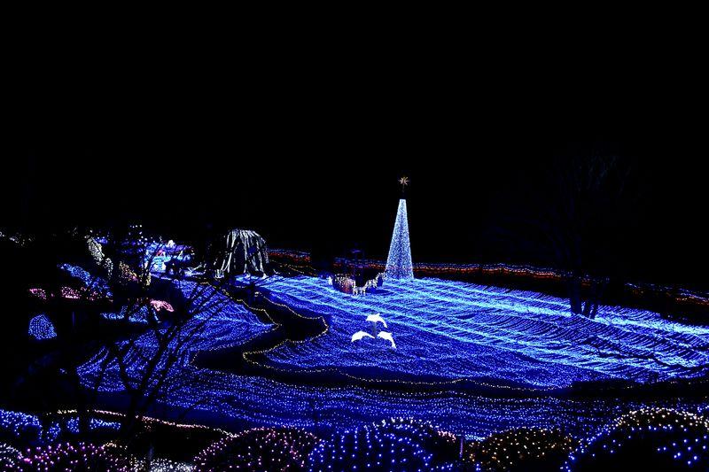 口コミだけで1万人来場!京都最大のイルミネーション!「イルミエール京都」〜京都府南丹市・るり渓温泉