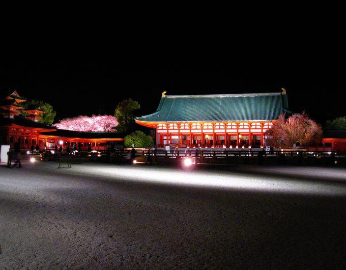 京の春の風物詩「平安神宮紅しだれコンサート」