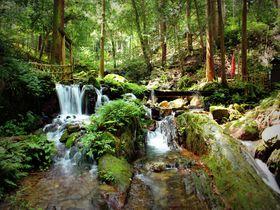 名水百選『瓜割の滝』その水は瓜を割る冷たさ!福井県若狭町|福井県|トラベルjp<たびねす>