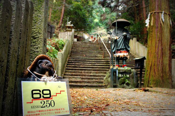 石段250段で健康になろう!