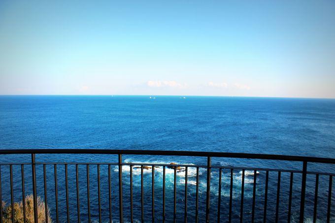 黒潮の海を望もう