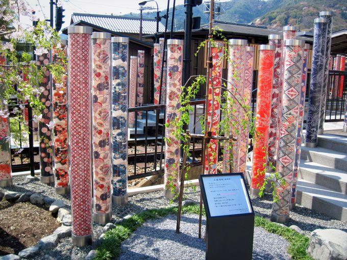 東北の被災地と京都を繋ぐ絆の桜「キミマツサクラ」