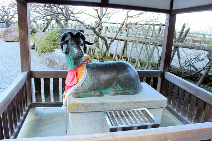 知恵を授かる、羊の像!?
