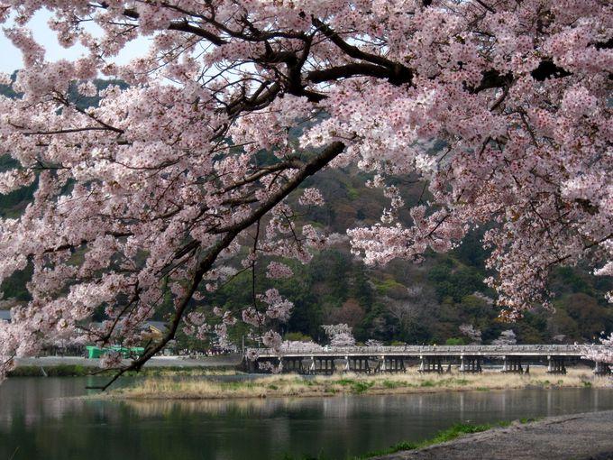 嵯峨嵐山駅から徒歩15分:渡月橋