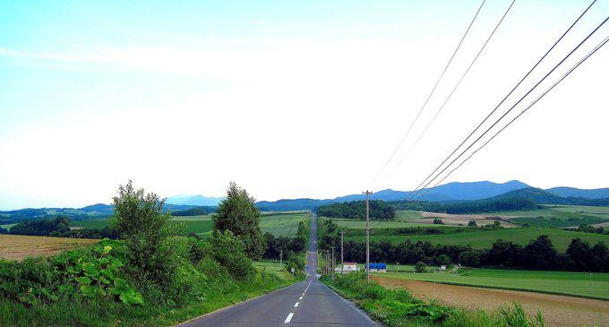 爽快ドライブルート『ジェットコースターの路』