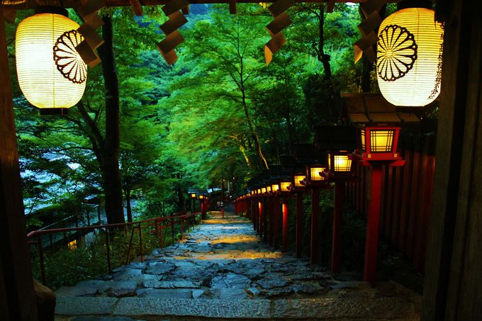 2.七夕笹飾りライトアップ(貴船神社)/京都府