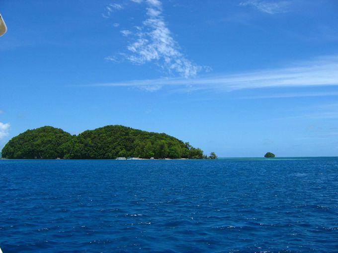 太平洋の島国パラオにある「イノキアイランド」