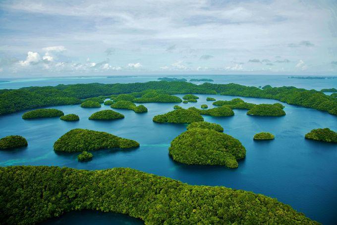 太平洋の島国・パラオの「内なる海」