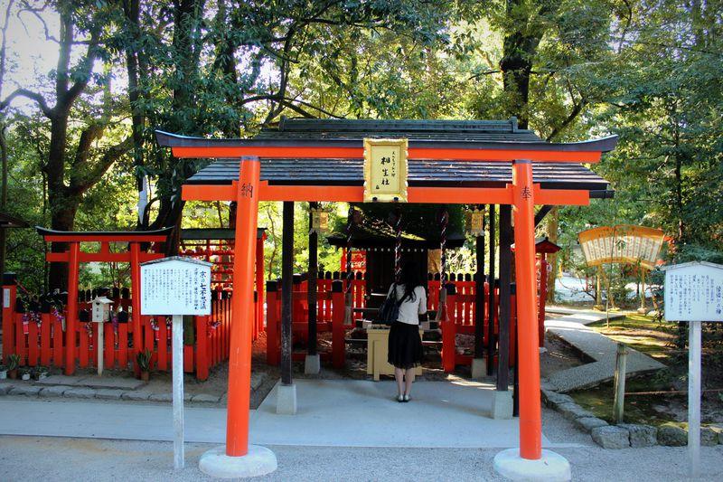 京都最強!?下鴨神社「相生社」は凄〜い縁結びのパワースポット!