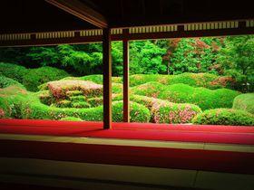 ピンクに染まる絶景庭園!滋賀「大池寺」の蓬莱庭園が想像以上に美しい|滋賀県|トラベルjp<たびねす>