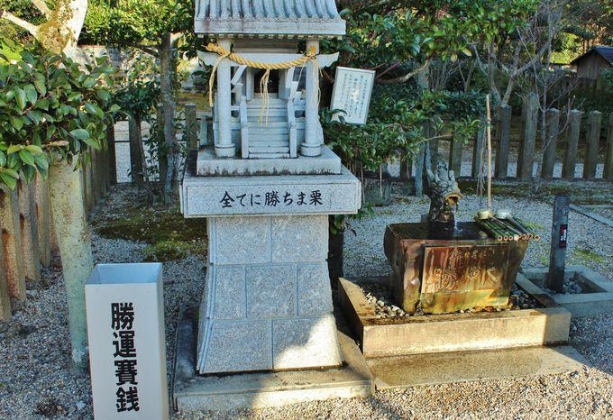 「乃木神社」は勝ち運のパワースポット