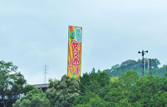 日本一の山彦「ヤッホーポイント」がある日高川町