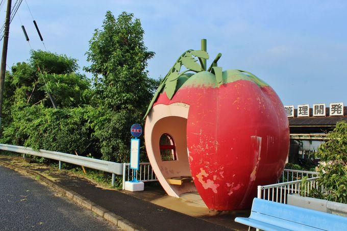 フルーツバス停のモチーフはグリム童話