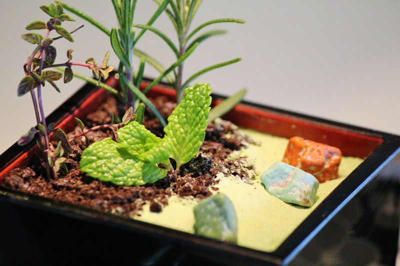 京都嵐山に食べられる庭園「ガーデンプリン」がある!?