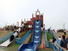 垂直落下式滑り台!?攻めすぎ遊具が話題の「びわ湖こどもの国」|滋賀県|トラベルjp<たびねす>