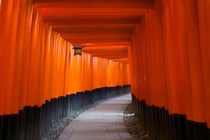 外国人にも人気!京都instagram鉄板スポット