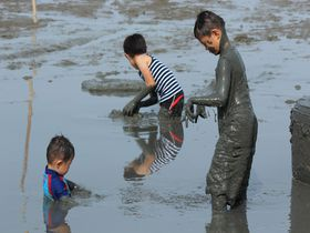青いばかりが海じゃない!佐賀「道の駅鹿島」で有明海の干潟を楽しもう