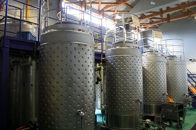 工場内で製造過程を見学!ワインに対する愛情を改めて実感!