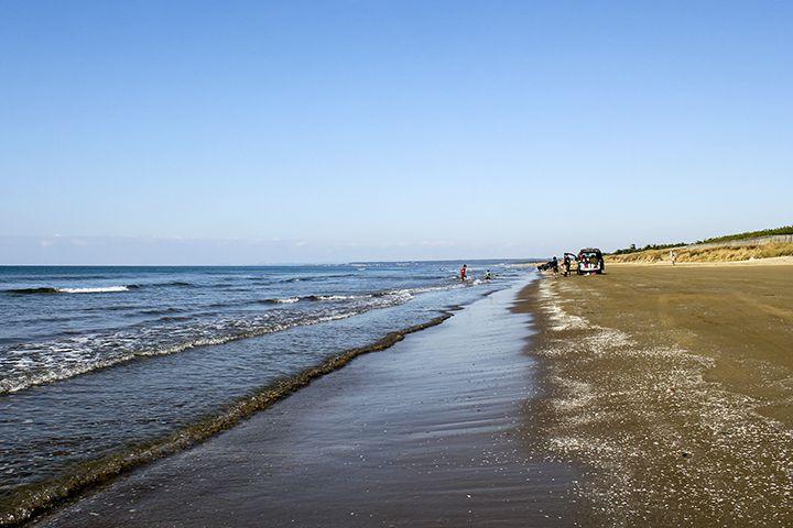 砂浜を車で走れる秘密は砂の粒子にあり!大型バスやバイクも走行可能♪