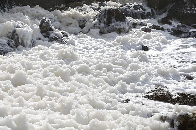 冬の外浦では多く見られる波の花!海が荒れている時は海辺を要チェック♪