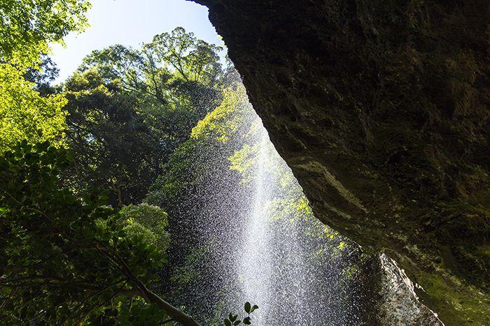 能登の自然が創り出した感動の造形美!〜能登の美しい滝巡り〜