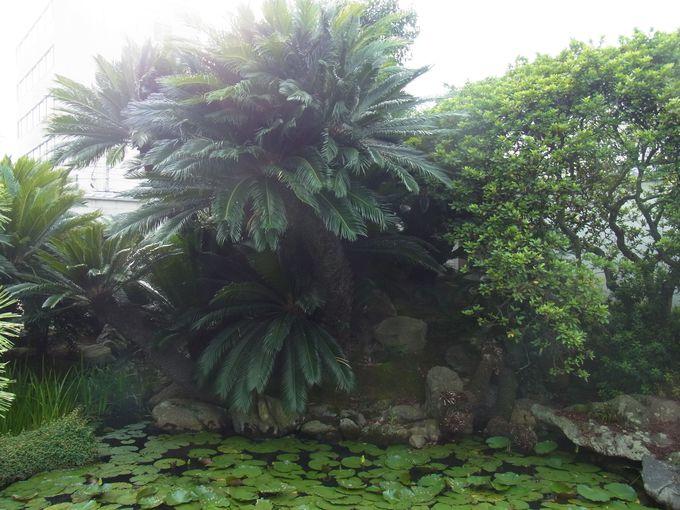 蕪村寺が傑作を残した妙法寺