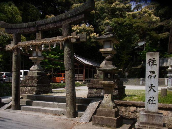 三輪山と同じく生駒山をご神体とした蒼古の杜・往馬大社