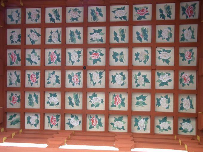 花天井絵と多宝塔で知る人ぞしる宝塔寺