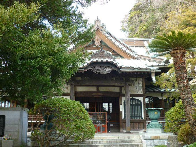 6. 良縁観音のお寺「安養院」