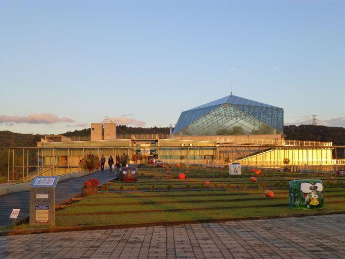 栃木県唯一の水族館