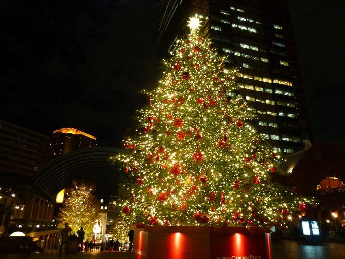 時計広場のクリスマスツリー