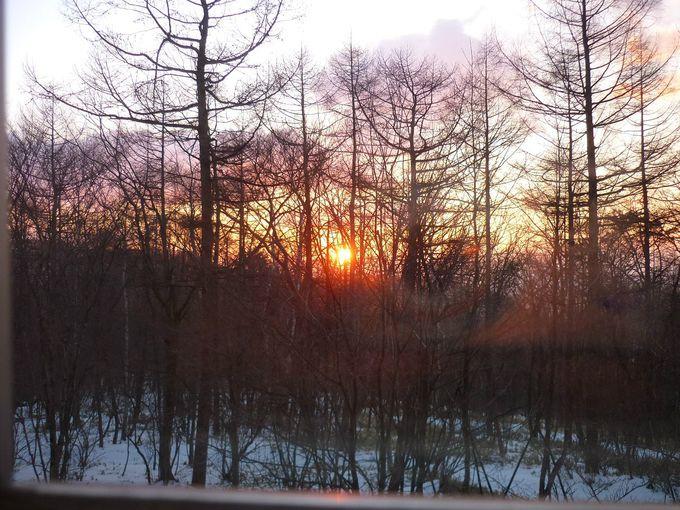 オレンジ色の朝日