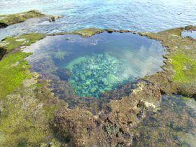 奄美大島のパワースポット!海の神秘「ハートロック」を見つけに行こう♪