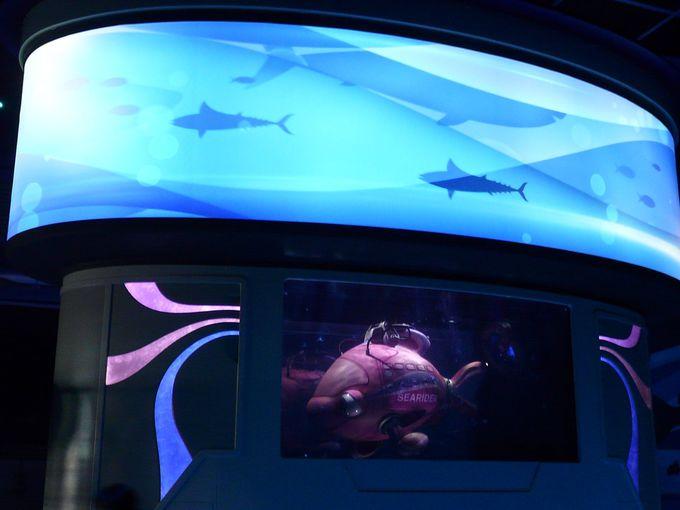 「ニモ&フレンズ・シーライダー」海洋生物研究所へ