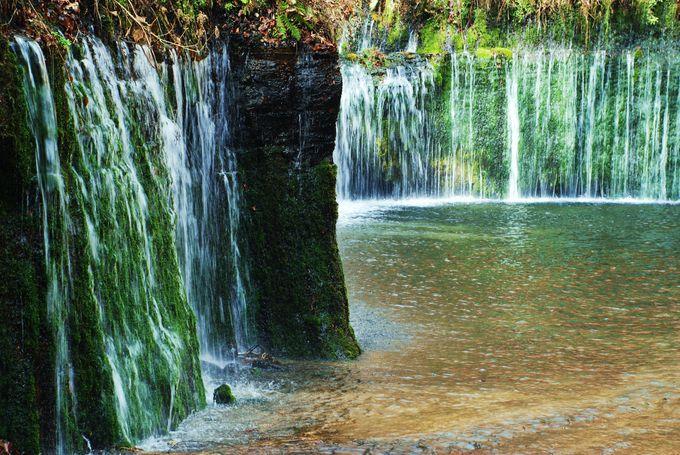 清涼な空気が漂う!白糸の滝!