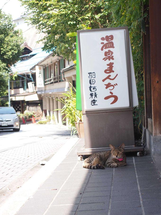 第一位:ダントツでおすすめ!「羽田甘精堂」の温泉饅頭