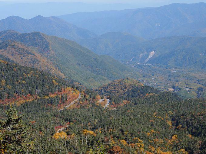 穂高連峰を見上げ、色づく紅葉を見下ろしながら