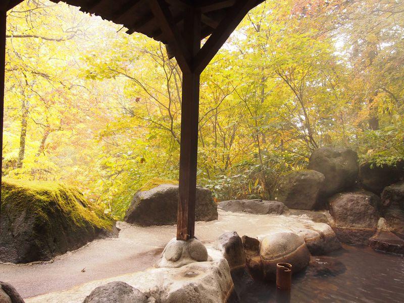 紅葉を愛でる立ち寄り秘湯〜岐阜・高山【平湯温泉 神の湯】