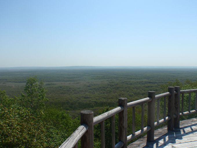まるでサバンナ?!日本最大の湿原は想像を遥かに超える広さ。