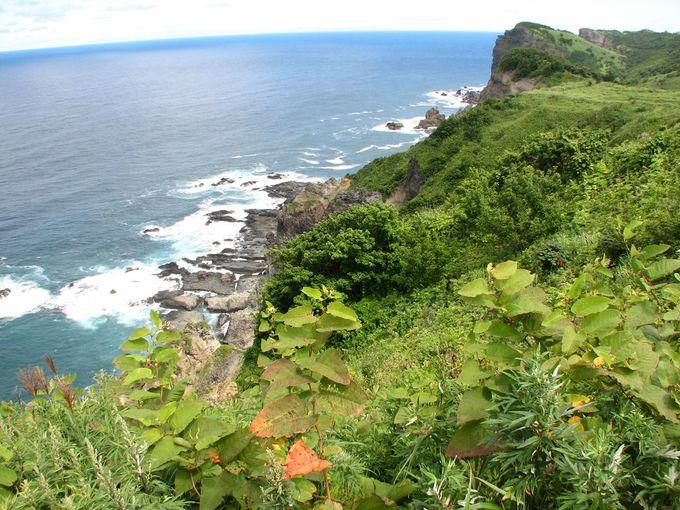 鮮やかな緑と断崖絶壁。自然の美しさと厳しさを実感!