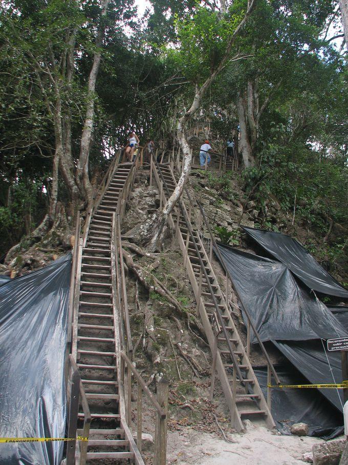 高さ65m!4号神殿の木製階段は慎重に登ろう!