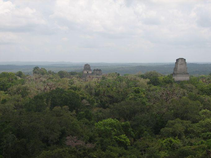 ティカル観光のハイライト。4号神殿から眺望に圧倒される!