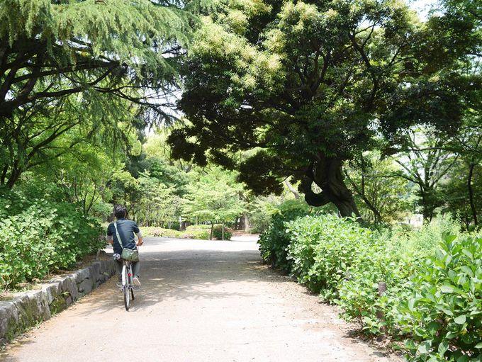 散策に古墳。鶴舞公園の楽しみ方はいろいろ。