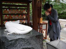お願い、なまず様!嬉野「豊玉姫神社」で乙姫様に美肌祈願