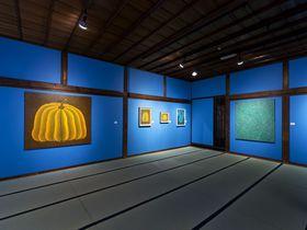 京都×畳×草間彌生!「フォーエバー現代美術館 祇園京都」って一体何者?