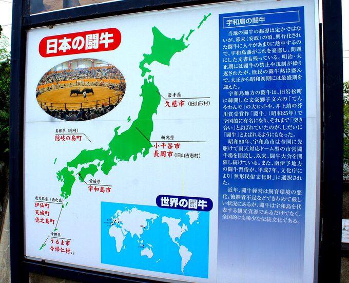 """まず、""""日本の闘牛""""ってどんなもの?"""